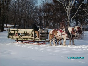 Getting ready to give sleigh rides at Molitor's Quarry Grill & Bar